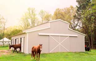 Custom Metal Barn With Side Stall Doors